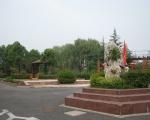 西郊花苑绿化